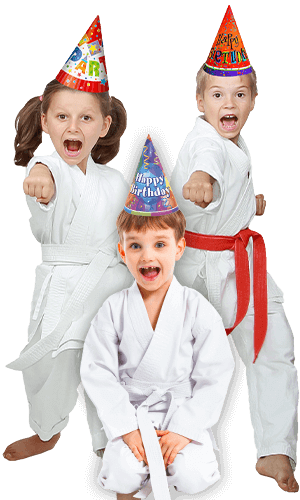 Martial Arts Birthday Party for Kids in Lake Jackson TX - Birthday Punches Page Banner